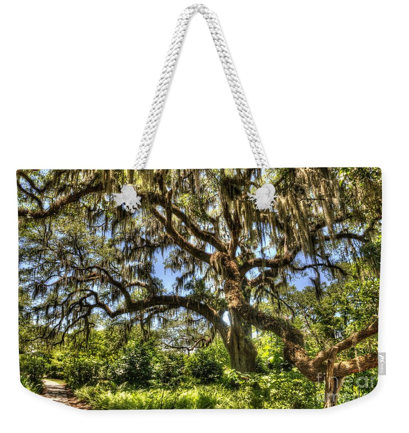 Brookgreen Gardens Weekender Tote Bag featuring the photograph Brookgreen Gardens by Dale Powell