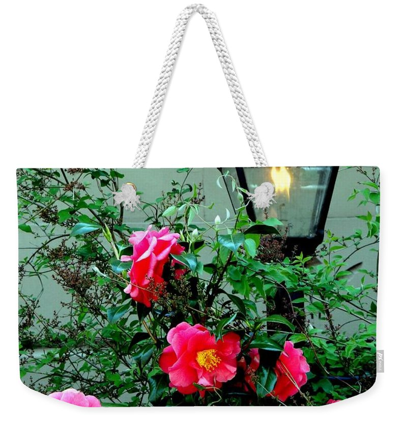 Flowers Weekender Tote Bag featuring the photograph Brooklyn Beauty by Ed Weidman