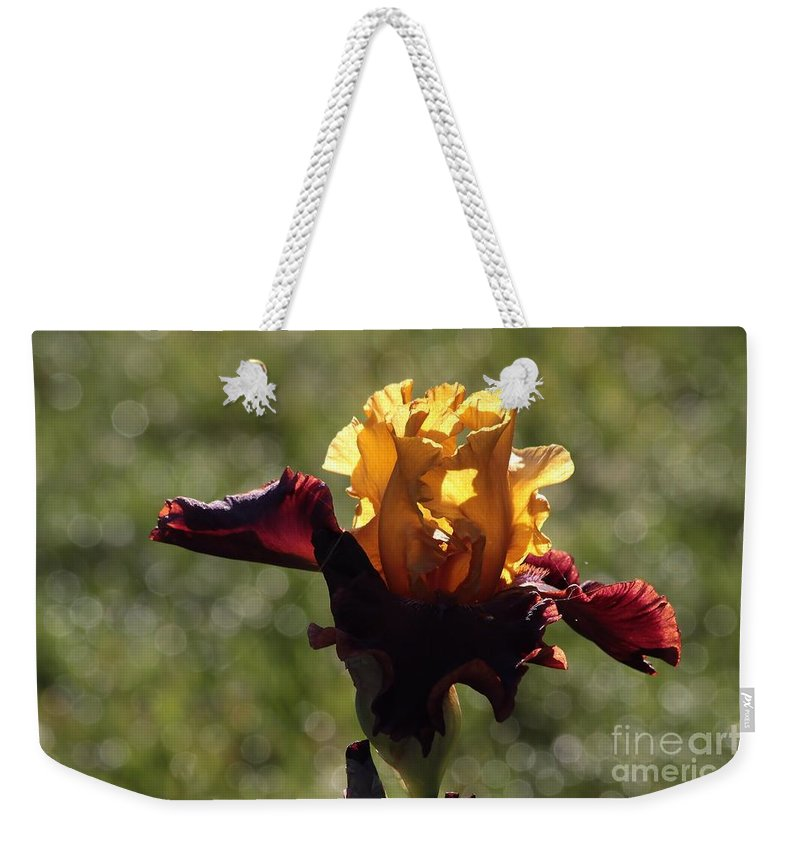 Iris Weekender Tote Bag featuring the photograph Brown And Yellow Iris by Kenny Glotfelty
