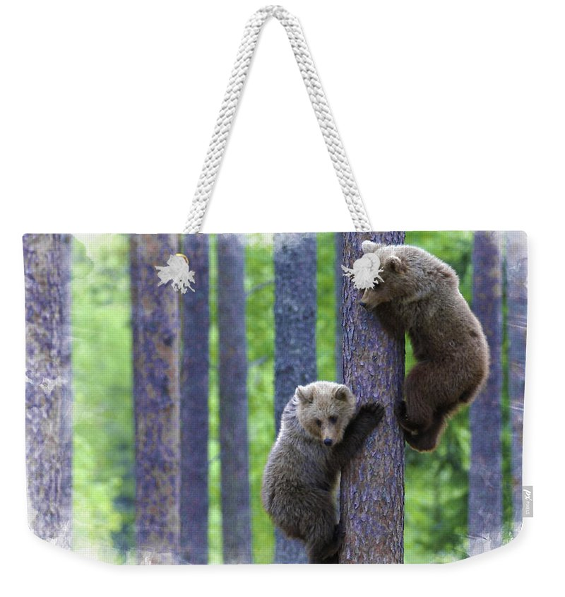 African Elephants Weekender Tote Bag featuring the digital art Brown Bear Climbing Lesson by Don Kuing
