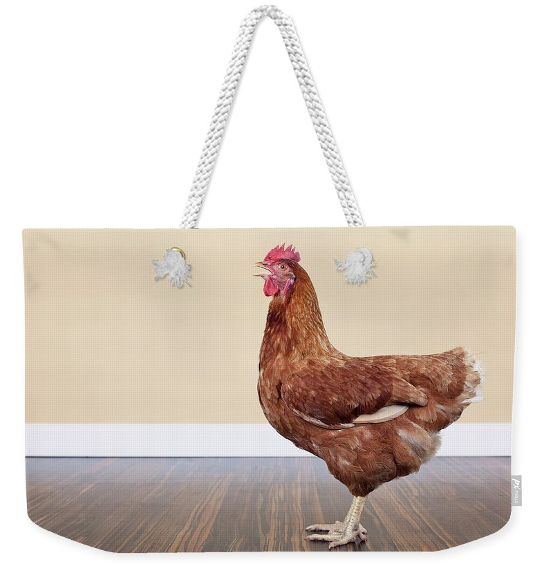 Hen Weekender Tote Bag featuring the photograph Brown Hen by Little Brown Rabbit Photography