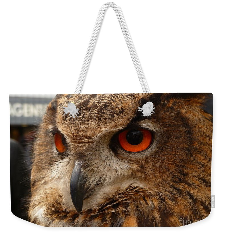 Brown Weekender Tote Bag featuring the photograph Brown Owl by Vicki Spindler