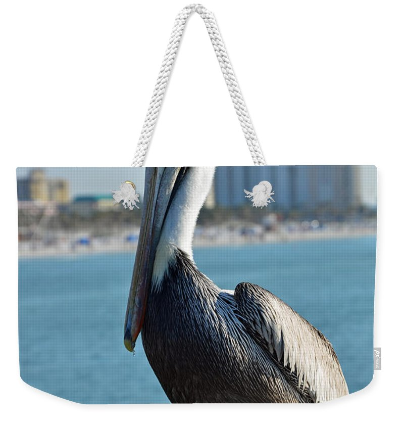 Pelican Weekender Tote Bag featuring the photograph Brown Pelican by Robert Meanor