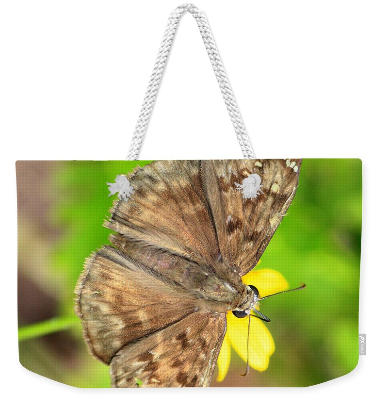 Skipper Weekender Tote Bag featuring the photograph Brown Skipper Butterfly Square by Carol Groenen