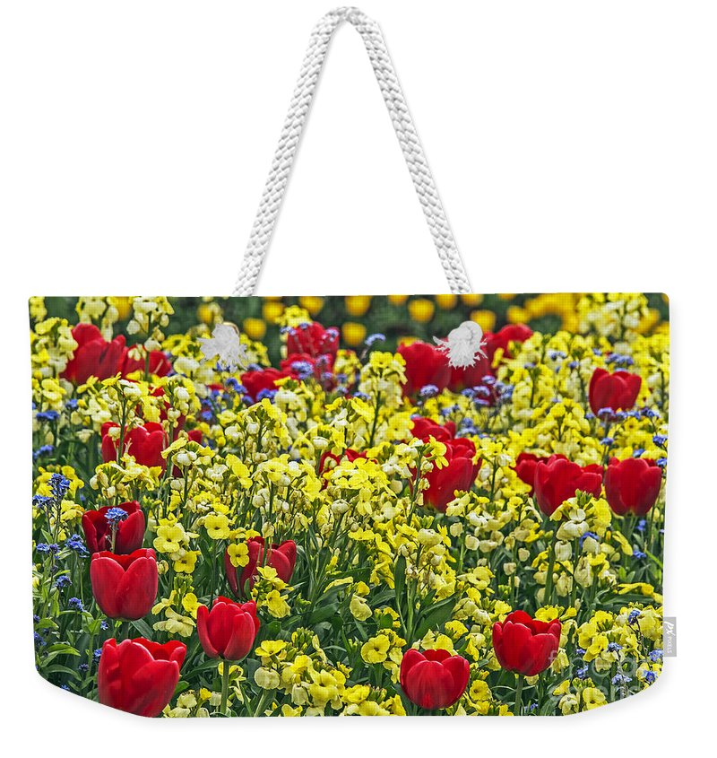 Travel Weekender Tote Bag featuring the photograph Buckingham Beauty by Elvis Vaughn