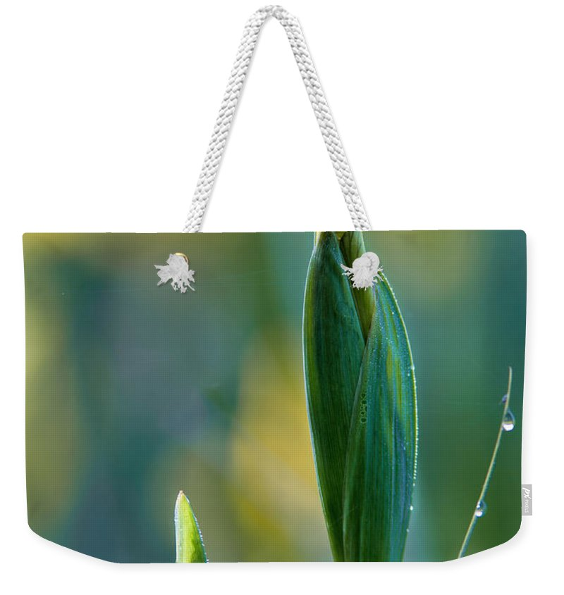 Iris Bud Weekender Tote Bag featuring the photograph Budding Iris by Dale Kincaid