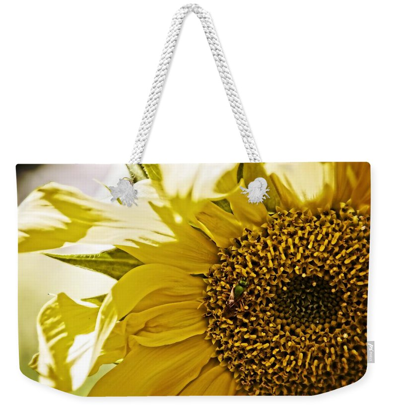 Sunflower Weekender Tote Bag featuring the photograph Bug In The Sunflower by Alice Gipson