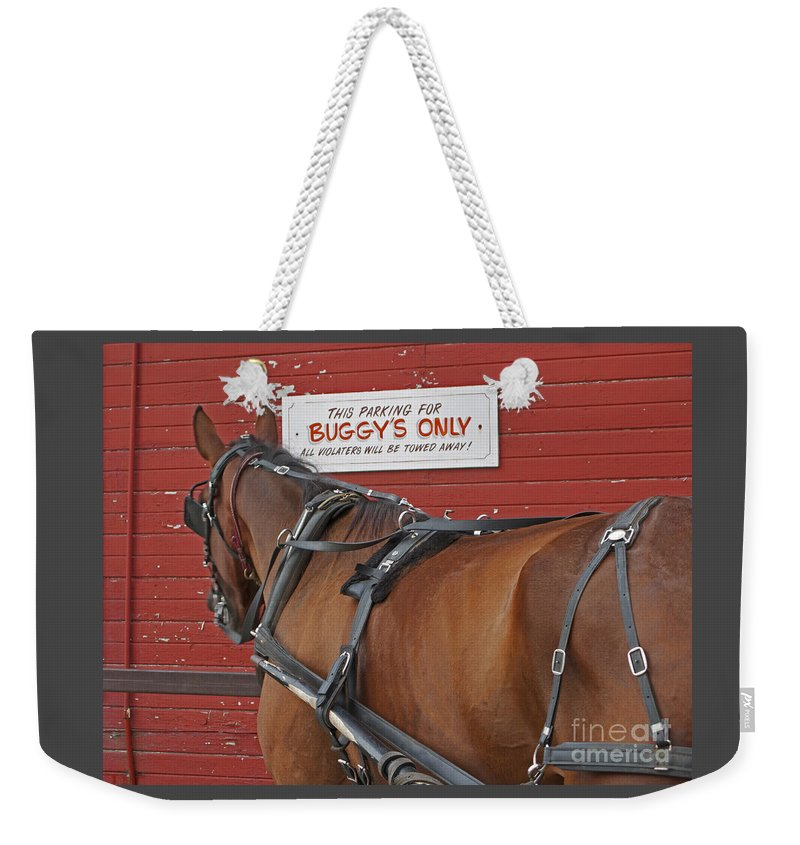 Amish Weekender Tote Bag featuring the photograph Buggy Attached by Ann Horn