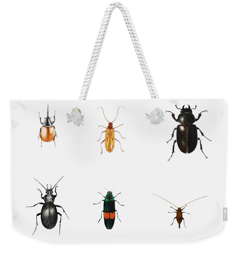 Bugs Weekender Tote Bag featuring the painting Bugs by Ele Grafton