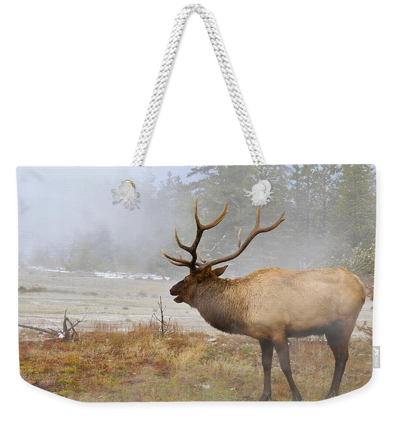 National Park Weekender Tote Bag featuring the photograph Bull Elk Bugles Loves In The Air by Ed Riche