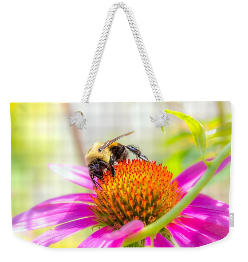 Bees Weekender Tote Bag featuring the photograph Bumble Bee by Bob Orsillo