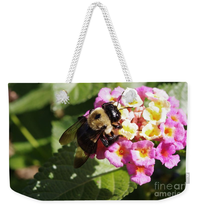 Weekender Tote Bag featuring the photograph Bumble Bee by Kara Duffus
