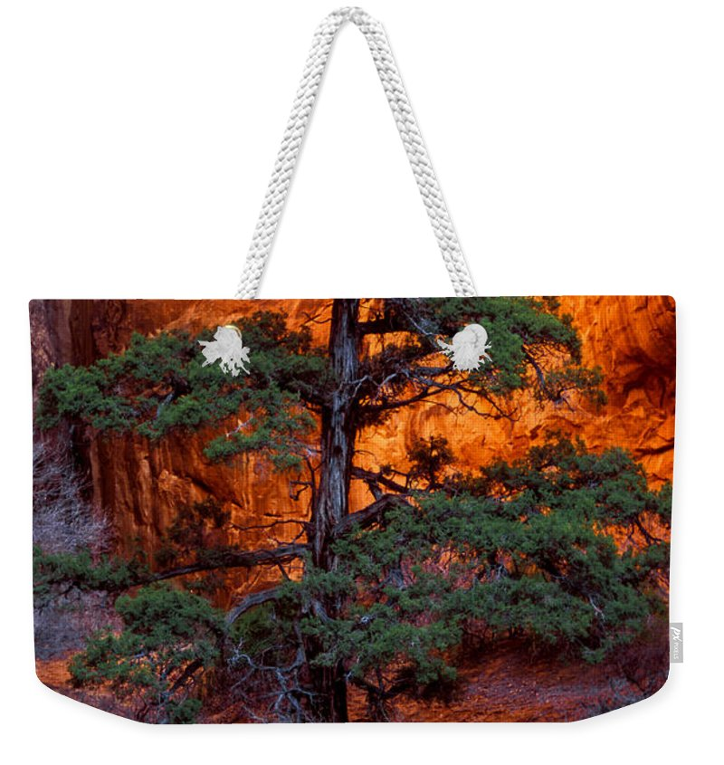Landscape Arch Trail Weekender Tote Bag featuring the photograph Burning Bush by Bob Phillips