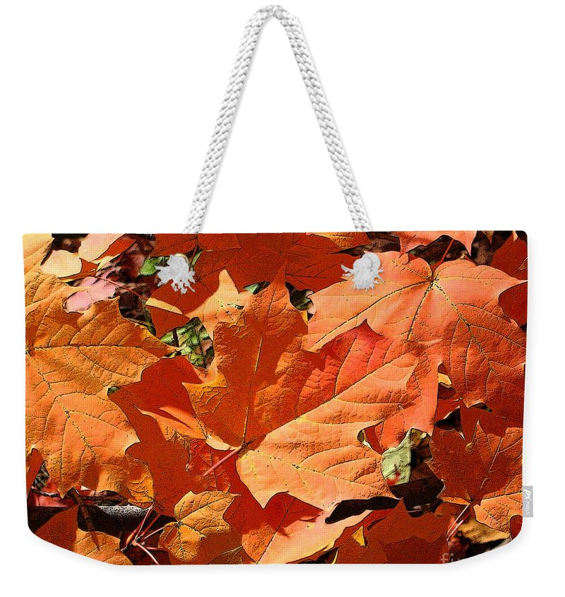 Autumn Weekender Tote Bag featuring the photograph Burnt Orange by Ann Horn