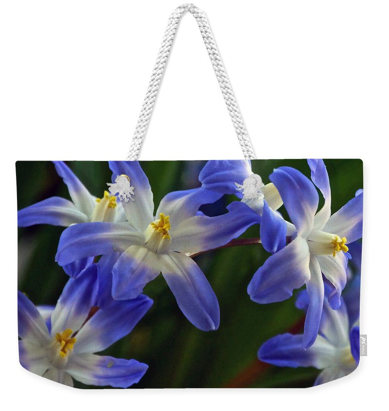 Glory Of The Snow Weekender Tote Bag featuring the photograph Burst Of Glory by Byron Varvarigos
