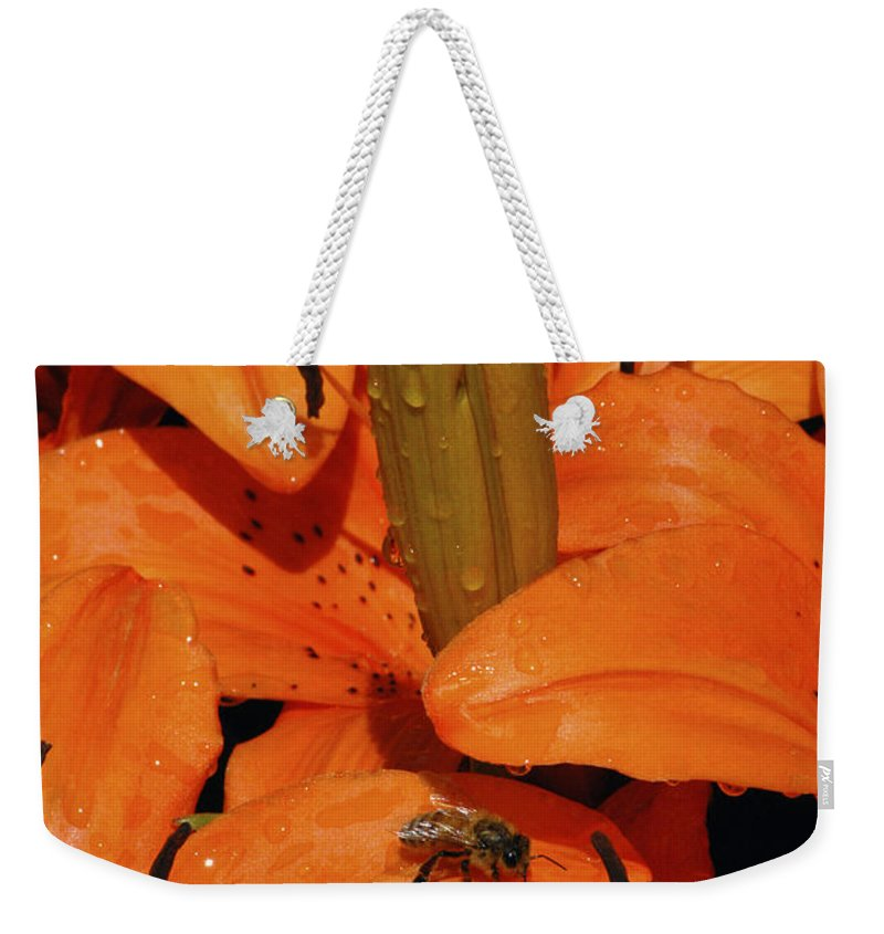Day Lily Weekender Tote Bag featuring the photograph Busy Bee - 774 by Paul W Faust - Impressions of Light