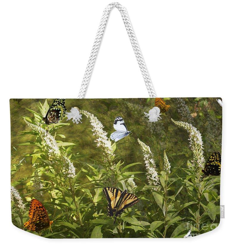 Butterflies Weekender Tote Bag featuring the photograph Butterflies In Golden Garden by Belinda Greb