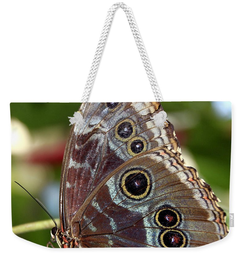 Macro Weekender Tote Bag featuring the photograph Butterfly 4 by Bob Slitzan