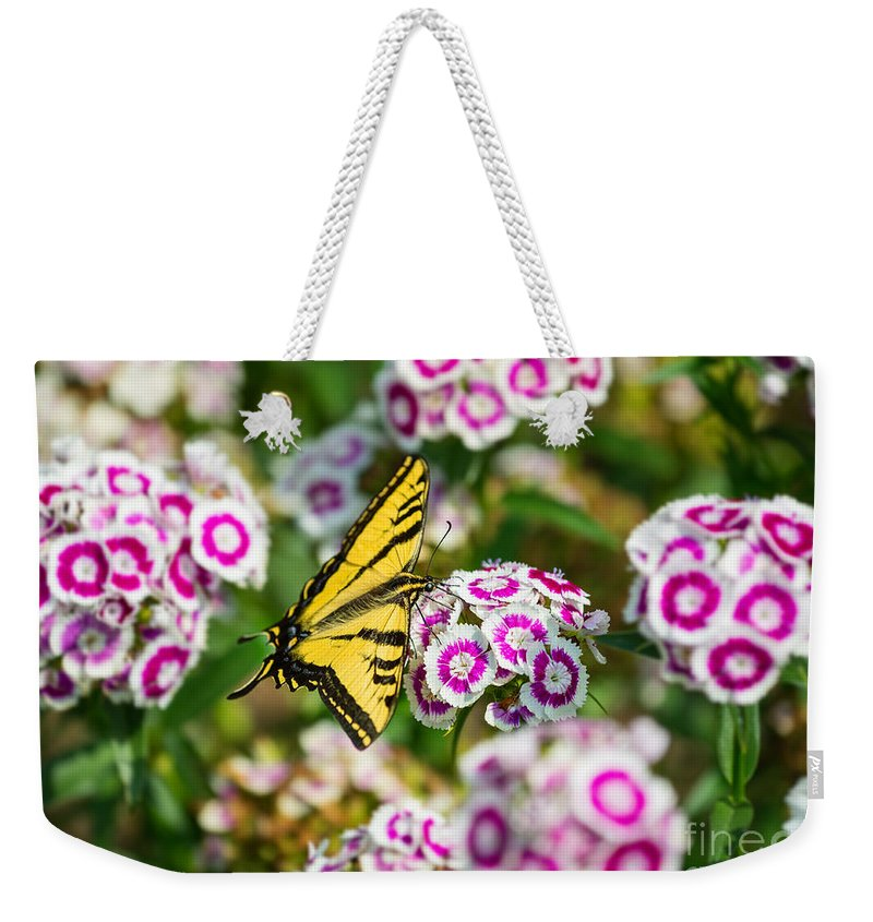 Daianthus Barbatus Weekender Tote Bag featuring the photograph Butterfly And Blooms - Spring Flowers And Tiger Swallowtail Butterfly. by Jamie Pham