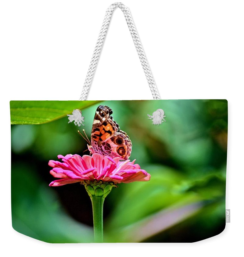 Butterfly Weekender Tote Bag featuring the photograph Butterfly And Flower by Tara Potts