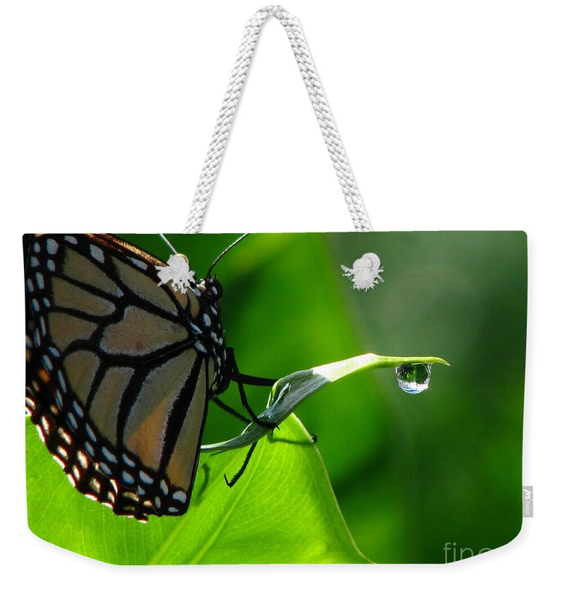 Patzer Weekender Tote Bag featuring the photograph Butterfly And Water by Greg Patzer
