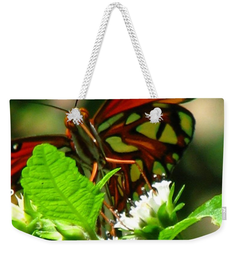Patzer Weekender Tote Bag featuring the photograph Butterfly Art by Greg Patzer