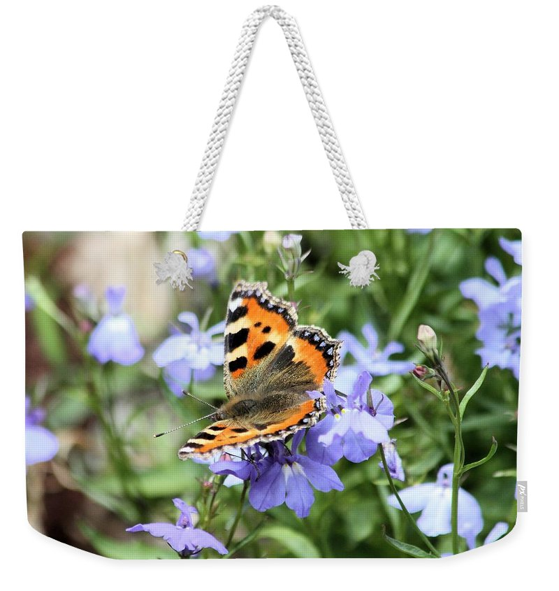 Butterfly Weekender Tote Bag featuring the photograph Butterfly On Blue Flower by Gordon Auld
