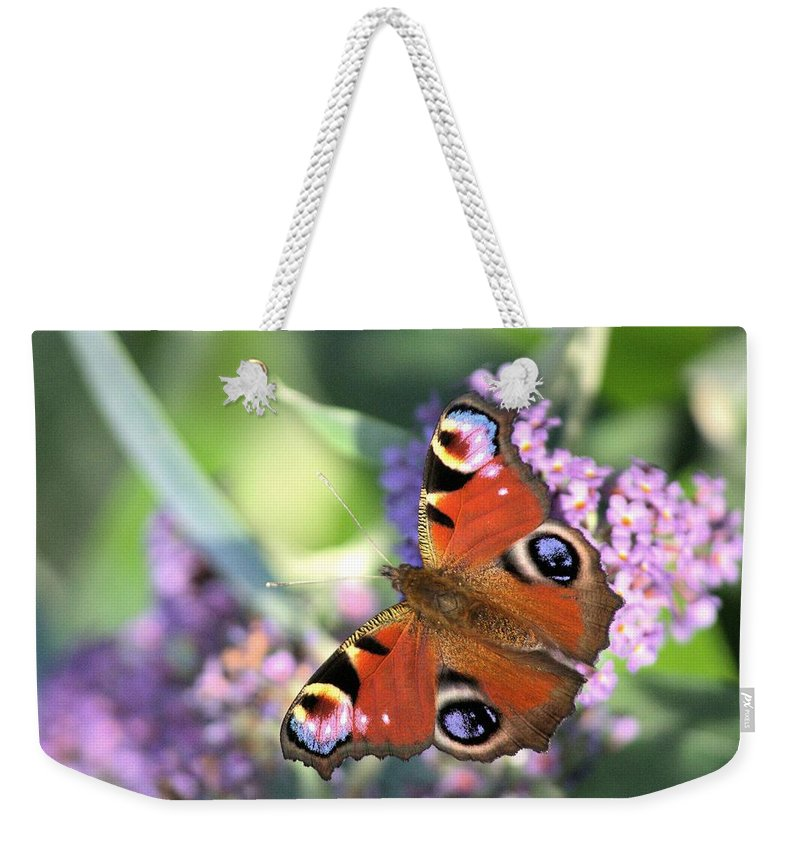 Butterfly Weekender Tote Bag featuring the photograph Butterfly On Buddleia by Gordon Auld