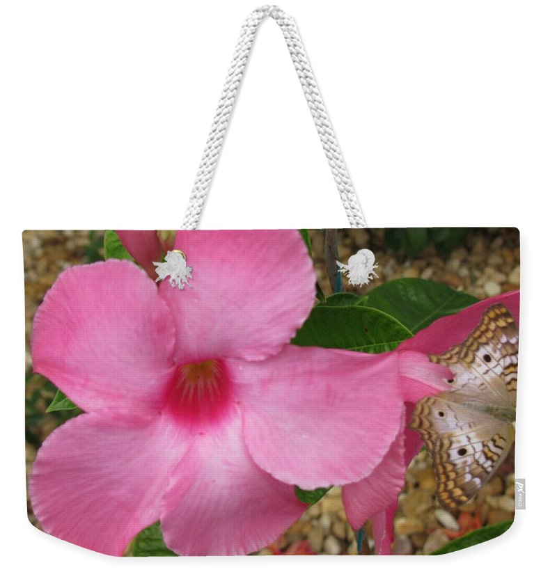 Flowers Weekender Tote Bag featuring the photograph butterfly on the Mandevilla by Zina Stromberg