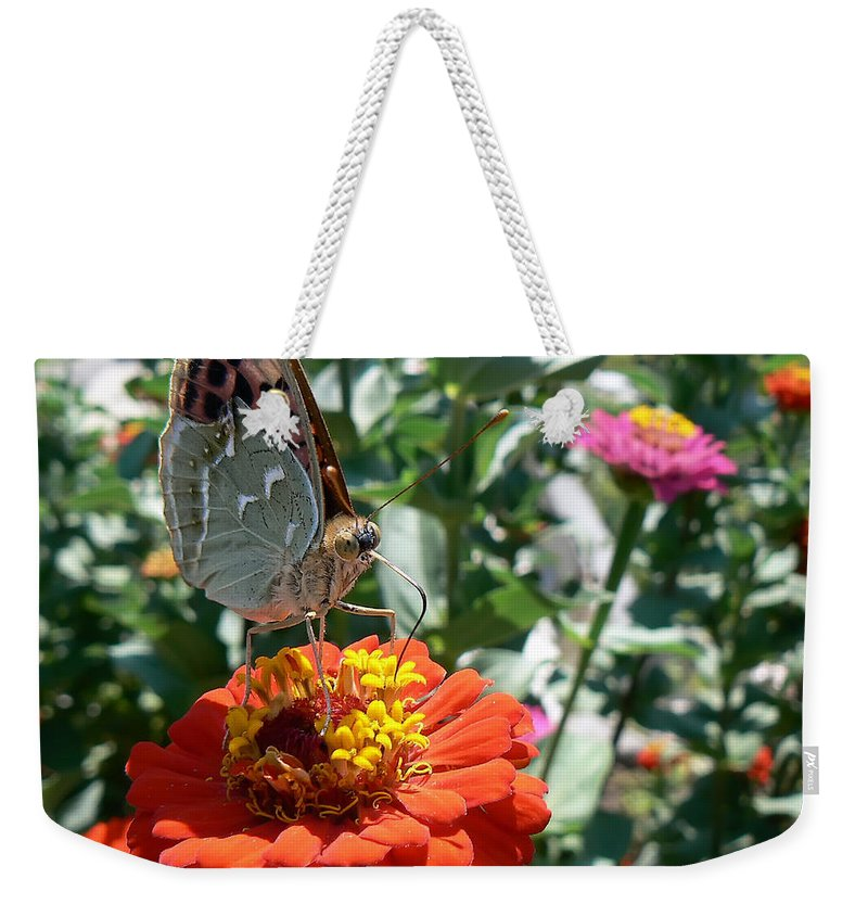 Butterfly Weekender Tote Bag featuring the photograph Butterfly by Paulo Goncalves