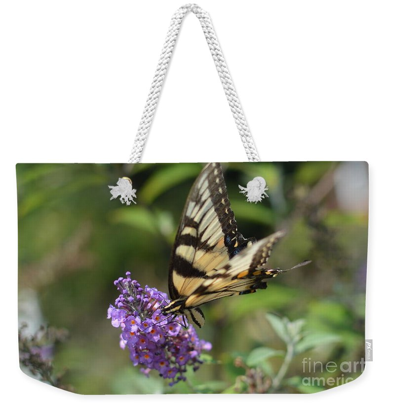 A Butterfly Sucking Pollen Through Its Straw. Yum Weekender Tote Bag featuring the photograph Butterfly Sucking On Some Pollen by Robert Loe