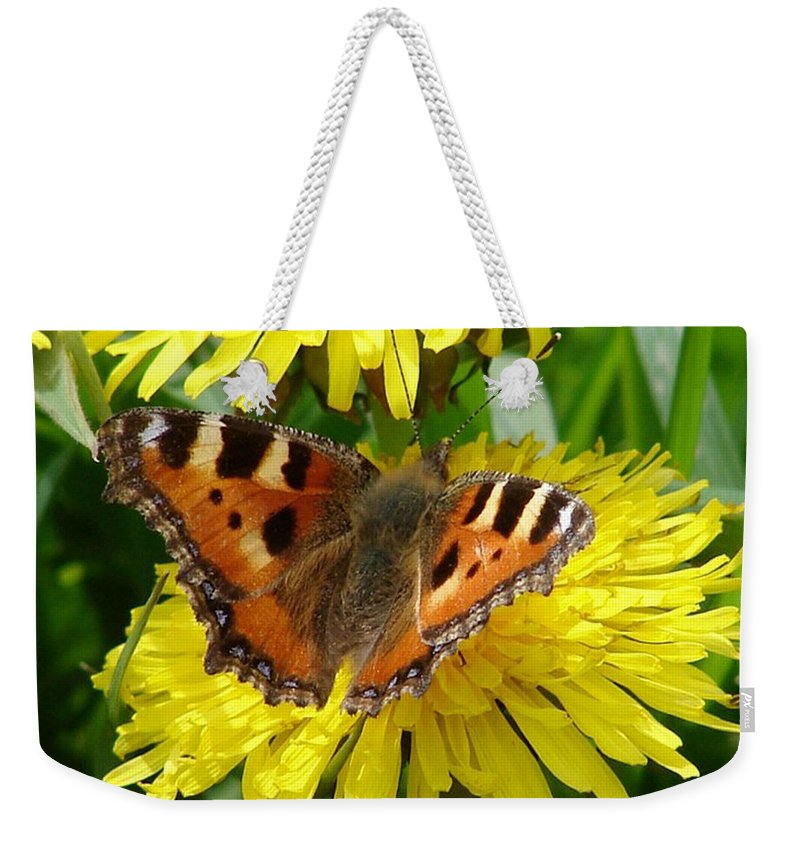 Butterfly Weekender Tote Bag featuring the photograph Butterfly Yellow by Carol Lynch