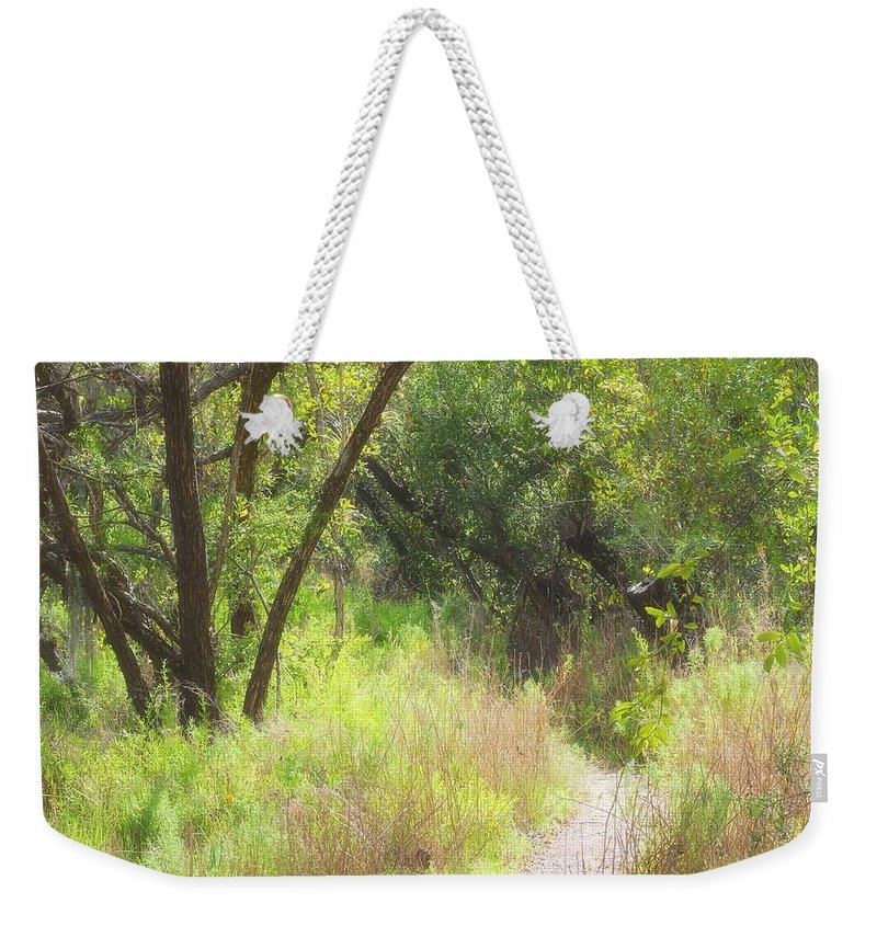 Weekender Tote Bag featuring the photograph Buttonwood Forest by Rudy Umans