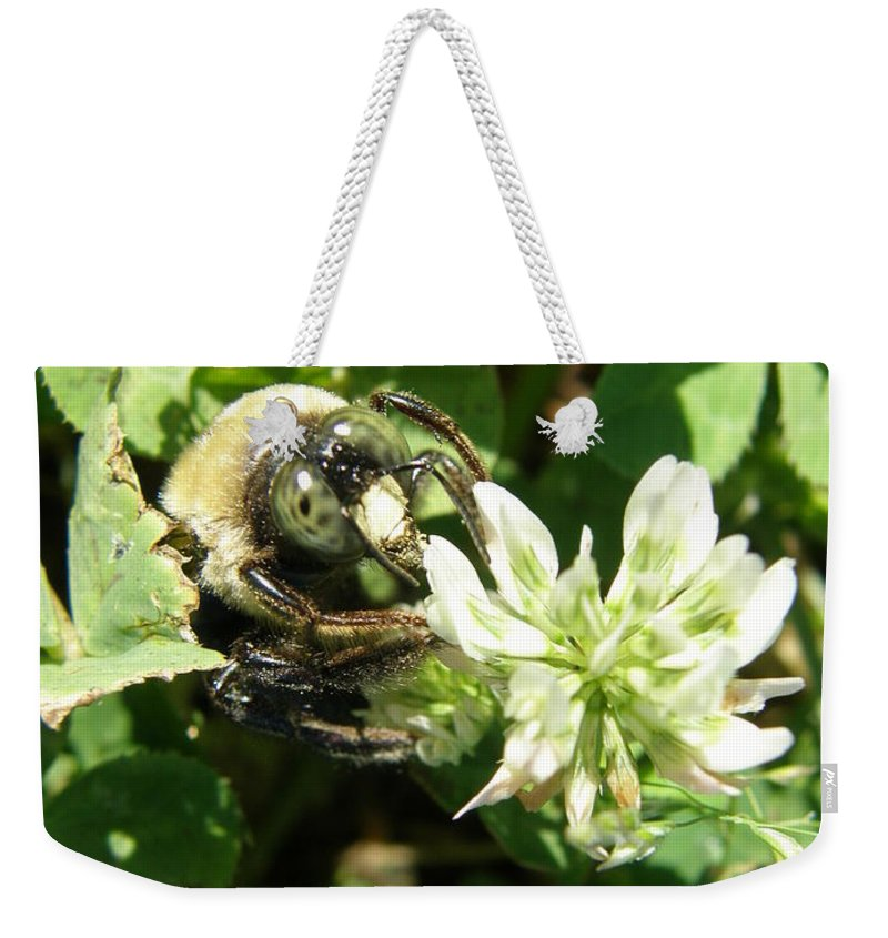 Bee Weekender Tote Bag featuring the photograph Buzz by Caryl J Bohn