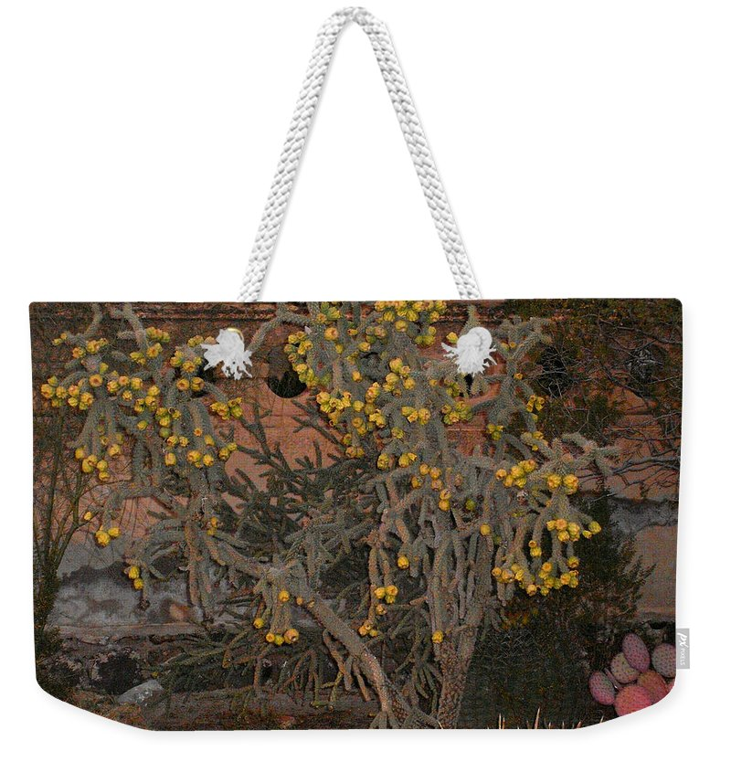 Cacti Weekender Tote Bag featuring the photograph Cacti Along The Garden Wall by Douglas Barnett