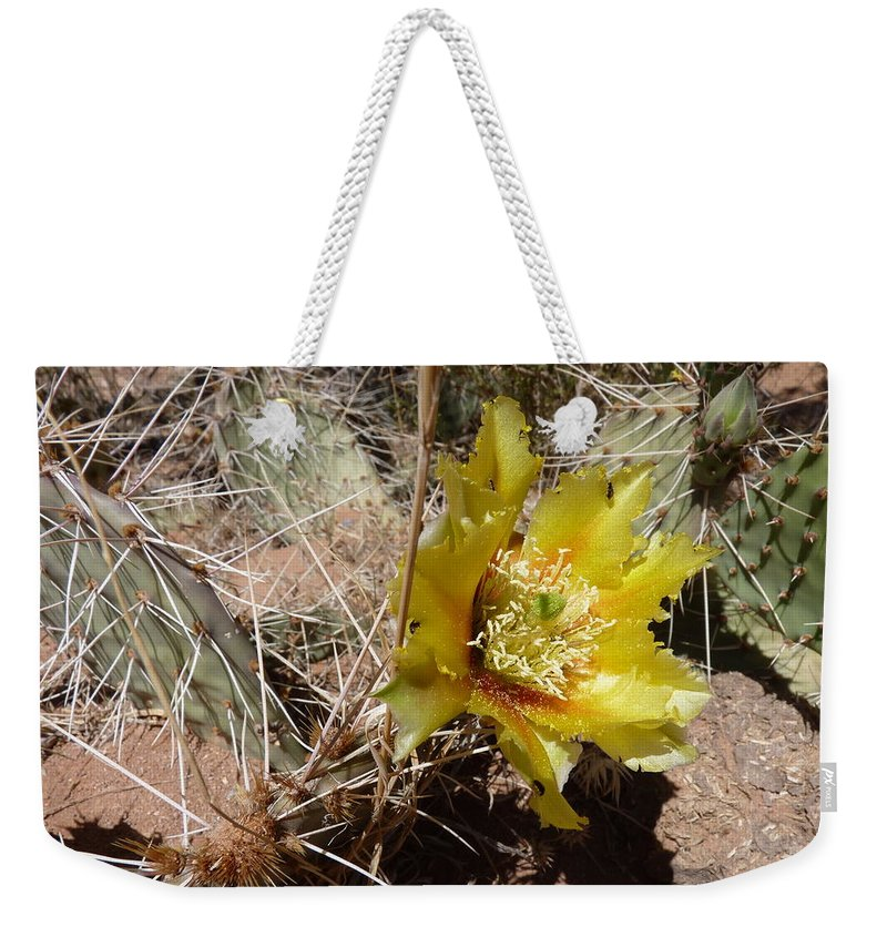 Weekender Tote Bag featuring the photograph Cactus Bloom by Katerina Naumenko