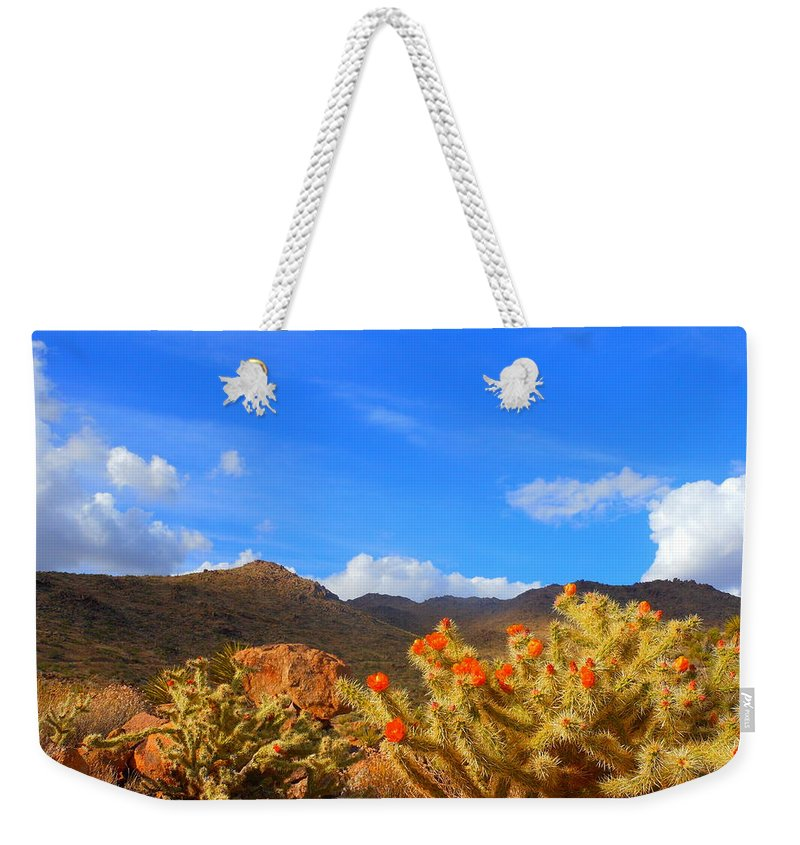 Landscape Weekender Tote Bag featuring the photograph Cactus In Spring by James Welch