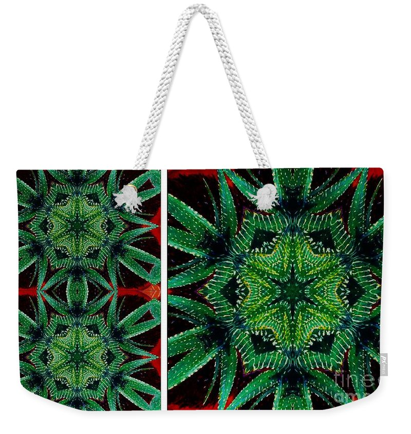 Cactus Triptych Weekender Tote Bag featuring the photograph Cactus Triptych by Barbara Griffin