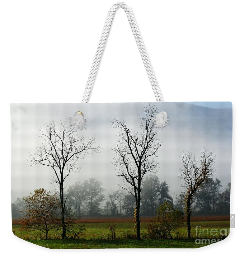 Weekender Tote Bag featuring the photograph Cades Cove Gsmnp IIi by Douglas Stucky