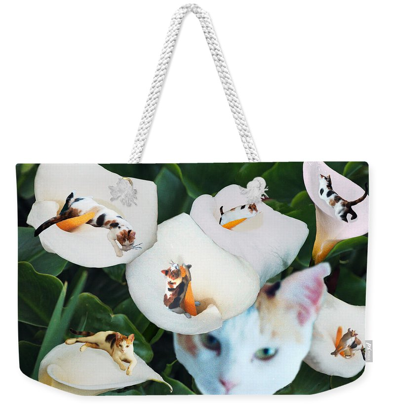 Cat Weekender Tote Bag featuring the digital art Cala In Callas by Lisa Yount