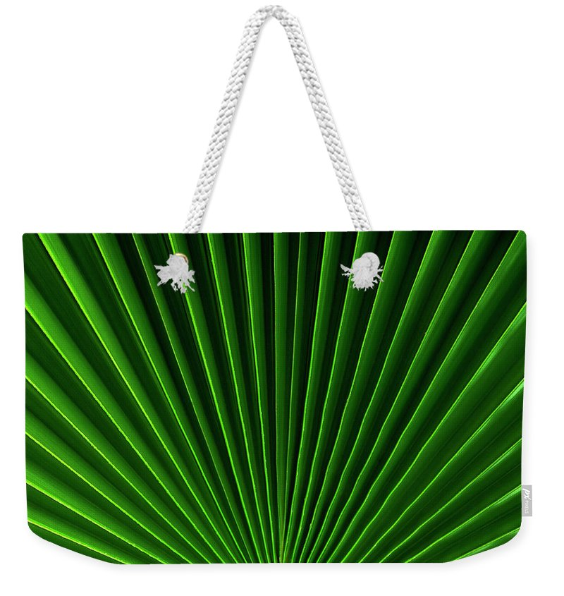 Fan Palm Tree Weekender Tote Bag featuring the photograph California Fan Palm Frond, Close Up by Thomas J Peterson