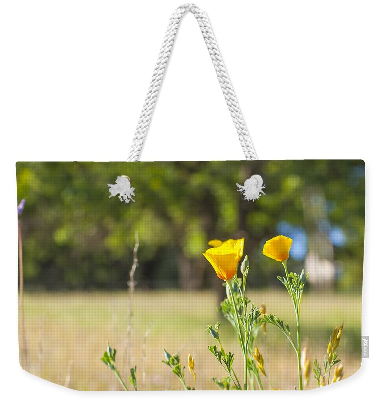 California Weekender Tote Bag featuring the photograph California Poppy by Gregory Dean