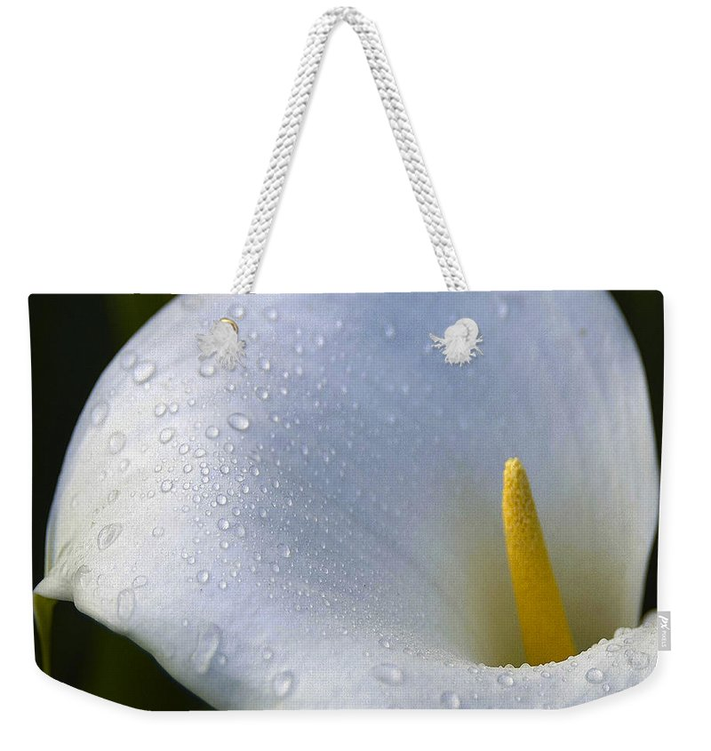 Calla Lily Weekender Tote Bag featuring the photograph Calla Lily 3 by Ingrid Smith-Johnsen