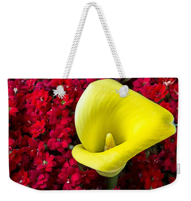Red Kalanchoe Weekender Tote Bag featuring the photograph Calla Lily In Red Kalanchoe by Garry Gay