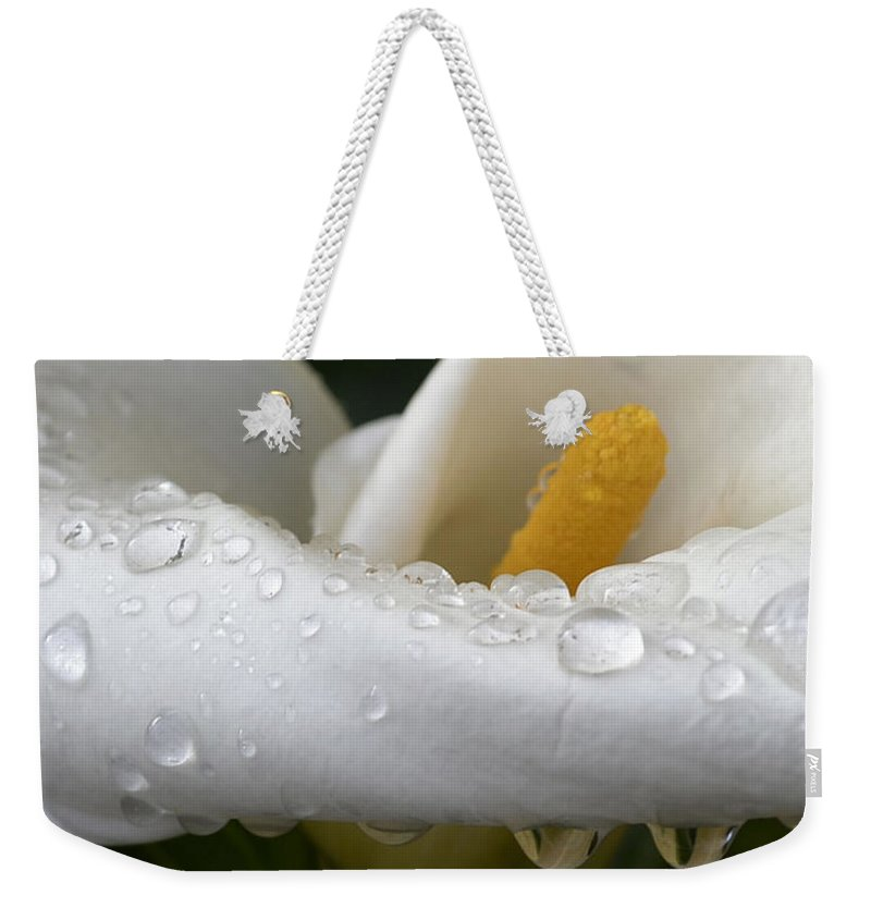 Calla Weekender Tote Bag featuring the photograph Calla Lily With Raindrops by Nadalyn Larsen