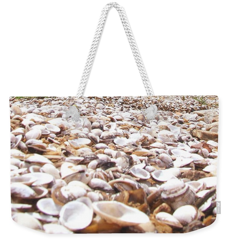 Shelves Weekender Tote Bag featuring the photograph Camino by Andrea Anderegg