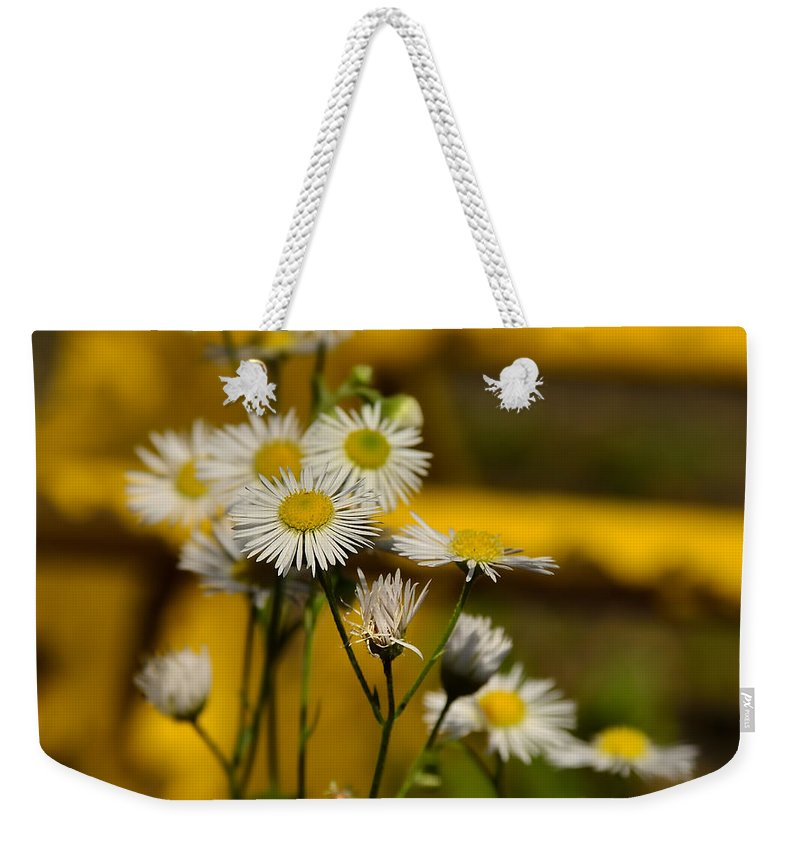 Background Weekender Tote Bag featuring the photograph Camomille by TouTouke A Y
