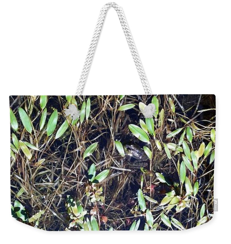 Nature Weekender Tote Bag featuring the photograph Camouflage Frog by Lisa Wormell