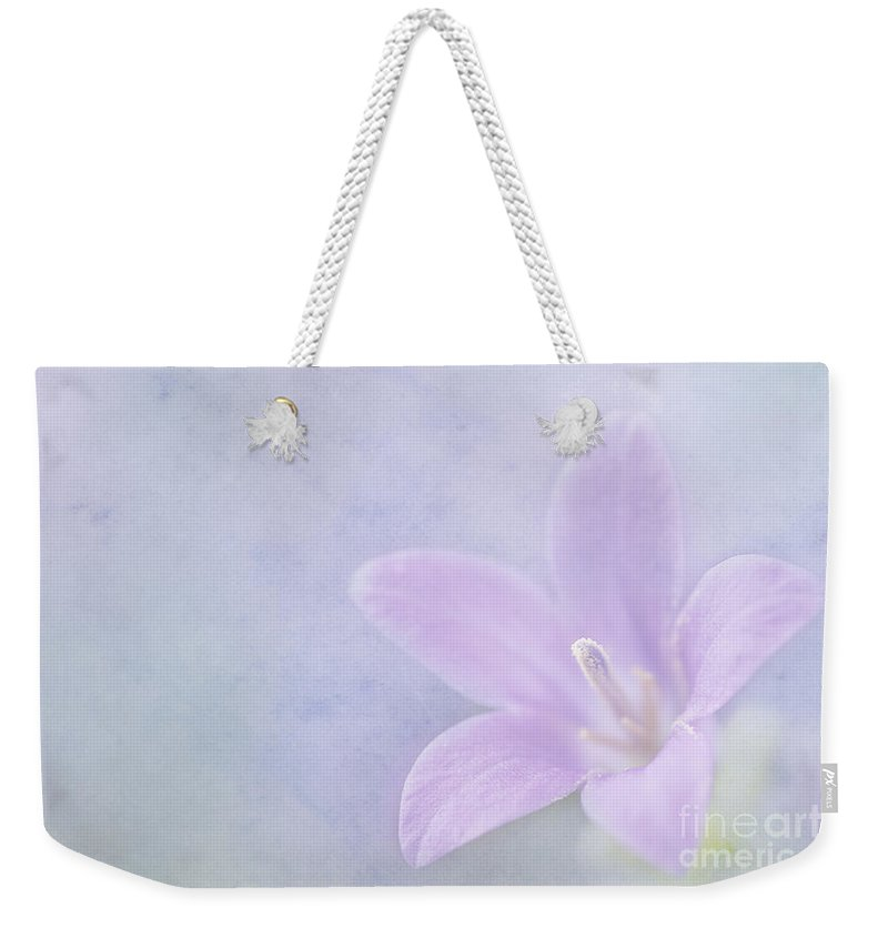 Wall Bellflower Weekender Tote Bag featuring the photograph Campanula Portenschlagiana by John Edwards