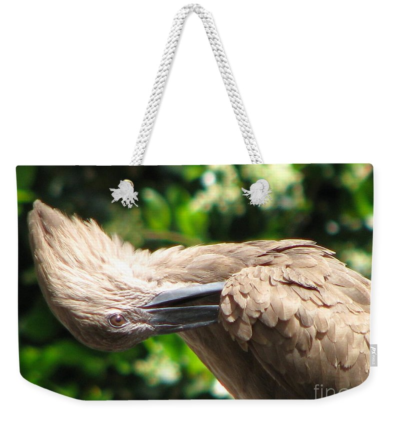 Patzer Weekender Tote Bag featuring the photograph Can You Do This by Greg Patzer